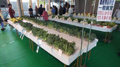 ロビー野菜
